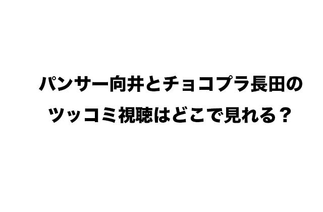 パンサー向井とチョコプラ長田のツッコミ視聴はどこで見れる?